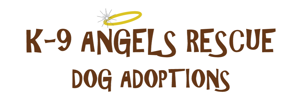 K-9 Angels Rescue Adoptable Dogs